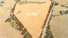 Rural / Farming commercial property for sale at 580 Bebakine Road Mumberkine WA 6401