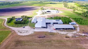 Rural / Farming commercial property for sale at BRUCE HIGHWAY & EAST EURI CREEK ROAD & DRY CREEK R Bowen QLD 4805