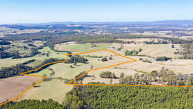 Rural / Farming commercial property for sale at 149 Hoods Road Glengarry TAS 7275