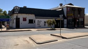 Hotel, Motel, Pub & Leisure commercial property for sale at 34 Bromide St Broken Hill NSW 2880