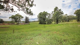 Development / Land commercial property for sale at 24 Common Road Muswellbrook NSW 2333