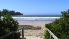 Hotel, Motel, Pub & Leisure commercial property for sale at 1774 Greens Beach Rd Greens Beach TAS 7270
