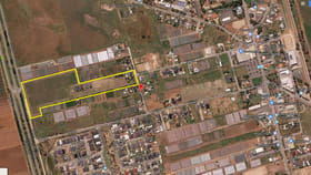 Development / Land commercial property for sale at Lot 241 O'Loughlin Road Virginia SA 5120
