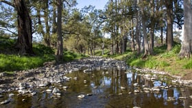 Rural / Farming commercial property for sale at 1479 Coolah Creek Road Coolah NSW 2843