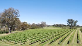 Rural / Farming commercial property for sale at 2920 Eden Valley Road Mount Pleasant SA 5235