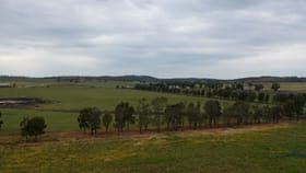 Rural / Farming commercial property sold at 1098 Sandy Creek Road Caragabal NSW 2810