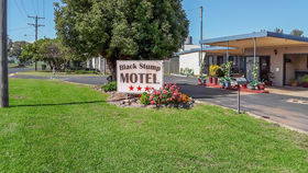 Hotel, Motel, Pub & Leisure commercial property for sale at 10-14 Campbell Street Coolah NSW 2843