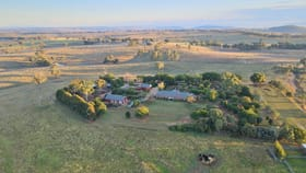 """Rural / Farming commercial property sold at """"Restalrig"""" Hartfield Road Young NSW 2594"""