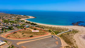 Development / Land commercial property for sale at 27 Vitenbergs Drive Point Samson WA 6720