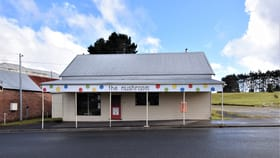 Shop & Retail commercial property for sale at 24 Main Street Waratah TAS 7321