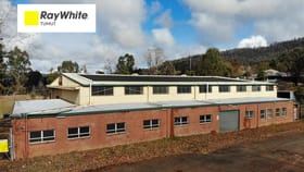 Factory, Warehouse & Industrial commercial property for sale at 14-26 Memorial Avenue Batlow NSW 2730