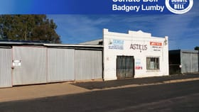 Factory, Warehouse & Industrial commercial property for sale at 33 Third Ave Narromine NSW 2821