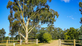 Rural / Farming commercial property for sale at 355E Redmanvale Road Jerrys Plains NSW 2330