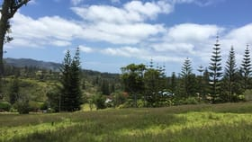 Development / Land commercial property for sale at 47g3 Martins Road Norfolk Island NSW 2899