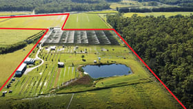 Rural / Farming commercial property for sale at 5799 Pacific Highway Mororo NSW 2469