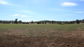 Rural / Farming commercial property sold at Lot 4 Mount Tallabung Road Forbes NSW 2871