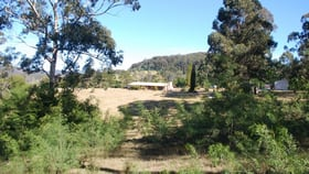 Rural / Farming commercial property sold at 171 Back Creek Road Nethercote NSW 2549