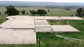 Rural / Farming commercial property for sale at 163 Milford Hills Lane Scone NSW 2337
