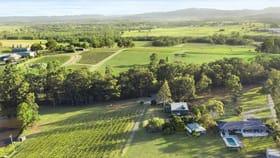 Rural / Farming commercial property for sale at 168 Palmers Lane Pokolbin NSW 2320