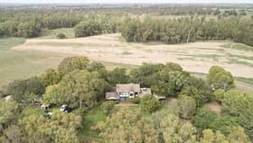 Rural / Farming commercial property for sale at 'Nampara' MACQUARIE VIEW ROAD Narromine NSW 2821