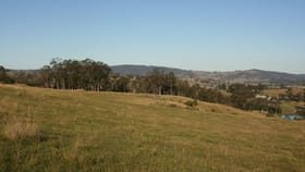 Rural / Farming commercial property for sale at Lot 15 & 18/76 Paterson River Road Gresford NSW 2311