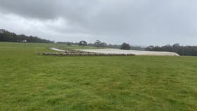 Rural / Farming commercial property for sale at ' Karinya' Napier WA 6330