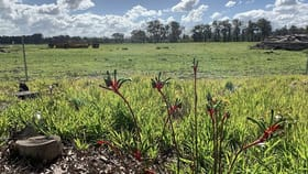 Rural / Farming commercial property for sale at Lot 408 South Western Highway Yarloop WA 6218