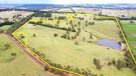 Rural / Farming commercial property for sale at 128 Murfitts Road Scotts Creek VIC 3267