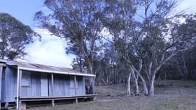 Rural / Farming commercial property for sale at 1080 Hereford Hall Road Braidwood NSW 2622