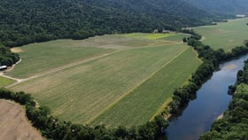 Rural / Farming commercial property for sale at 231 Barbagallo Road Aloomba QLD 4871