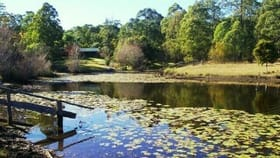 Rural / Farming commercial property for sale at Wang Wauk NSW 2423