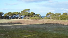 Rural / Farming commercial property for sale at Lot 10 NORTH CAPE ROAD Bay Of Shoals SA 5223