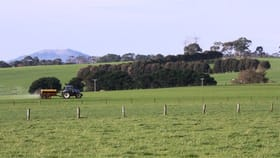Rural / Farming commercial property for sale at 189 Louth Swamp Road Byaduk VIC 3301