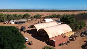 Rural / Farming commercial property for sale at 329 North River Road Carnarvon WA 6701