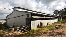 Rural / Farming commercial property for sale at 2, 511 Matheson Road Kyabram VIC 3620