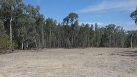 Rural / Farming commercial property sold at Lot 53 Ellersey Lane Condamine QLD 4416