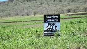 Rural / Farming commercial property for sale at 6/650 Goomburra Road Berat QLD 4362