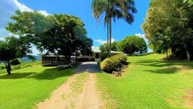 Rural / Farming commercial property for sale at 2407 Numinbah Road Chillingham NSW 2484