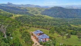 Rural / Farming commercial property for sale at Numinbah NSW 2484