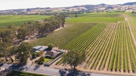 Rural / Farming commercial property for sale at Barossa Valley Way Rowland Flat SA 5352