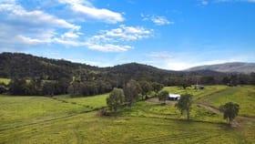 Rural / Farming commercial property for sale at 143 Majors Road Carmila QLD 4739