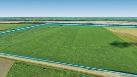 Rural / Farming commercial property for sale at 327 McDowell Road Carstairs QLD 4806