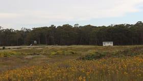 Rural / Farming commercial property for sale at 000 Harmans Road Mount Napier VIC 3301