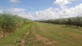 Rural / Farming commercial property for sale at 12 Read Road Proserpine QLD 4800