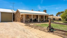 Rural / Farming commercial property for sale at 317 Scrubby Hill Road Highland Valley SA 5255