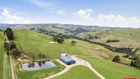 Rural / Farming commercial property for sale at 99 Fosters Road Wild Dog Valley VIC 3953