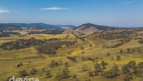 Rural / Farming commercial property for sale at 426 Prossers Road Richmond TAS 7025