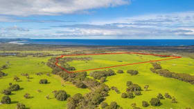 Rural / Farming commercial property for sale at Lot 2, Ficifolia Road Denmark WA 6333