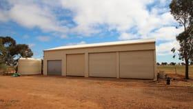 Rural / Farming commercial property for sale at 12 Gum Tree Drive Risdon Park South SA 5540