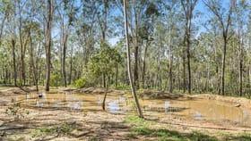 Rural / Farming commercial property for sale at 896 Murphys Creek Road Murphys Creek QLD 4352
